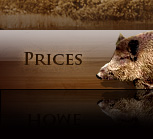 Taxidermy Pricing